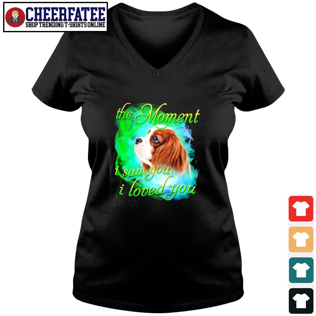 Spaniel the moment I saw you I loved you s v-neck t-shirt